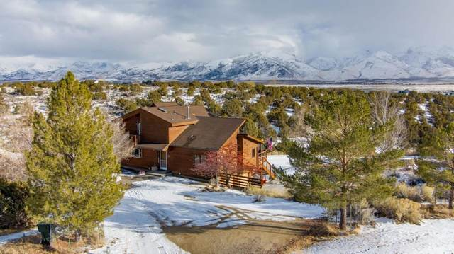 216 Holyoke Place, Spring Creek, NV 89815 (MLS #3620034) :: Shipp Group