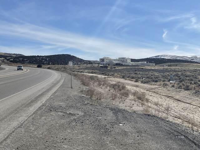 TBD Lamoille Highway, Elko, NV 89801 (MLS #3620076) :: Shipp Group