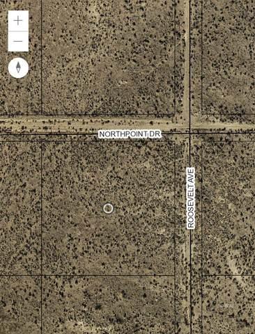 TBD Northpoint Drive, Ryndon, NV 89801 (MLS #3620154) :: Shipp Group