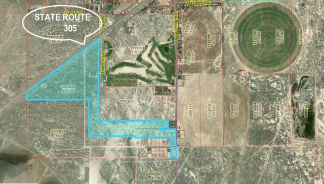 350 State Route 305 Highway, Battle Mountain, NV 89820 (MLS #3620170) :: Shipp Group