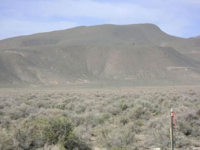 735 Bogey Drive, Battle Mountain, NV 89820 (MLS #3620173) :: Shipp Group