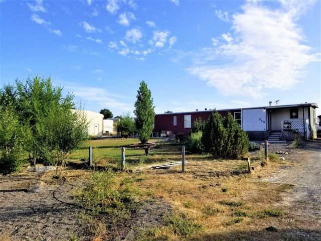 375 Merino Drive, Spring Creek, NV 89815 (MLS #3620217) :: Shipp Group