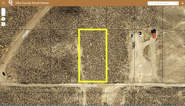 Rattlesnake Street, Elko, NV 89801 (MLS #3620274) :: Shipp Group