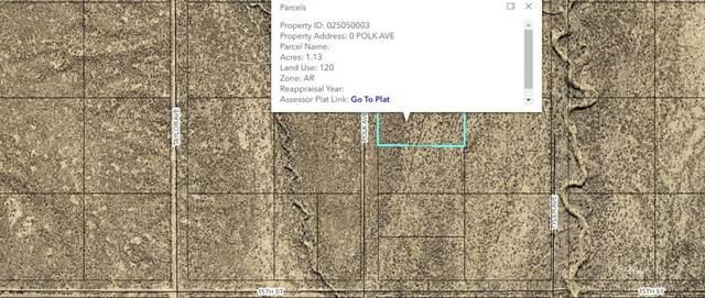 Polk Avenue, Elko, NV 89801 (MLS #3620385) :: Shipp Group