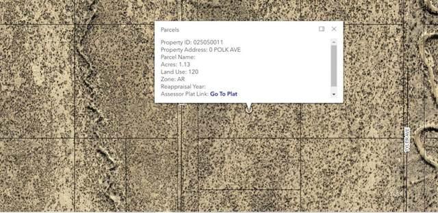 Polk Avenue, Elko, NV 89801 (MLS #3620386) :: Shipp Group
