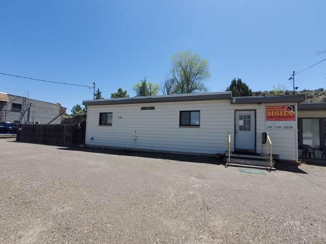 1050 Lamoille Highway, Elko, NV 89801 (MLS #3620431) :: Shipp Group