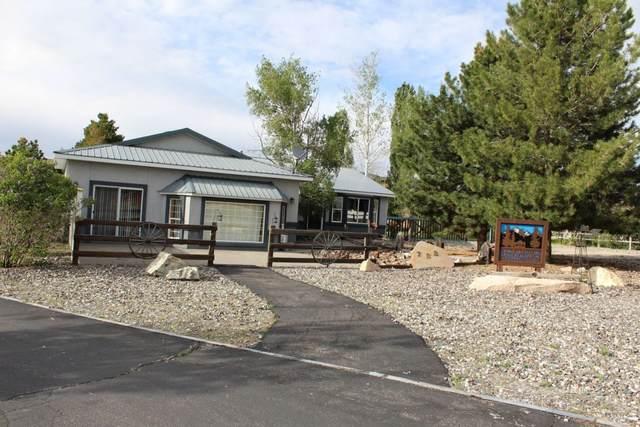 783 Bronco Drive, Spring Creek, NV 89815 (MLS #3620481) :: Shipp Group