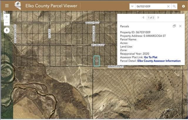 Amargosa Street, Elko, NV 89801 (MLS #3620531) :: Shipp Group