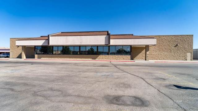 2450 Idaho Street, Elko, NV 89801 (MLS #3619413) :: Shipp Group