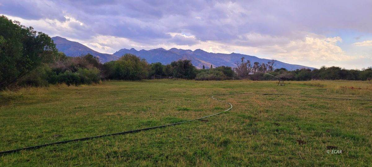 TBD Blume Ranch Road - Photo 1