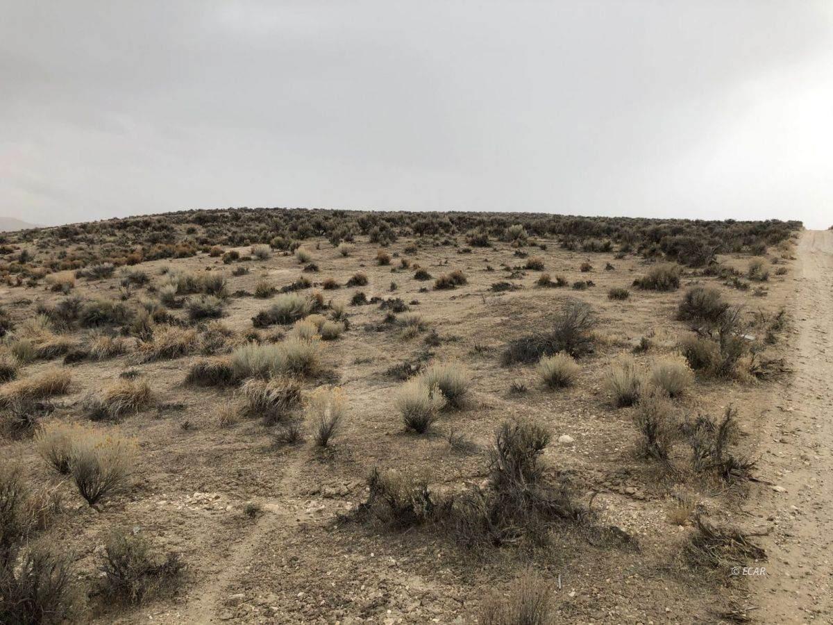 TBD Kayenta Drive - Photo 1