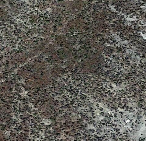 Ponerosa Drive, Elko, NV 89801 (MLS #3620464) :: Shipp Group
