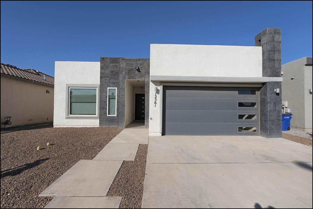12361 Desert Dove - Photo 1