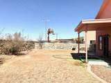 821 Desert Bush Drive - Photo 24