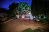 2028 Pueblo Nuevo Circle - Photo 14
