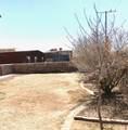 821 Desert Bush Drive - Photo 23