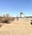 821 Desert Bush Drive - Photo 24