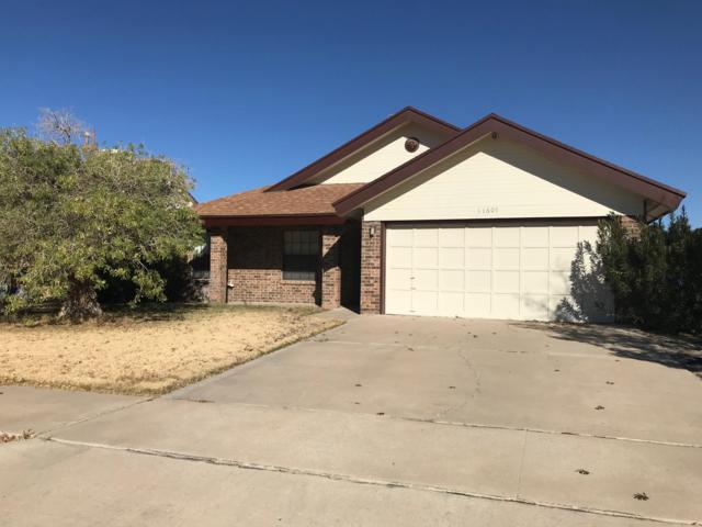 11607 James Grant Drive, El Paso, TX 79936 (MLS #800626) :: The Purple House Real Estate Group