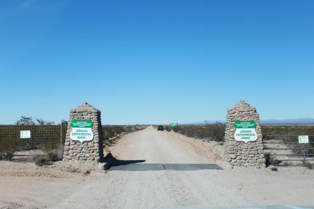 14100 Country Road D65 Road, Las Cruces, NM 88012 (MLS #802640) :: Jackie Stevens Real Estate Group