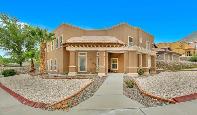 401 Mesilla Vista Lane, El Paso, TX 79912 (MLS #802660) :: The Matt Rice Group