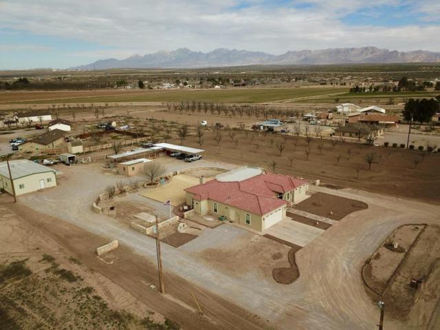 625 East Organ Road, Mesilla Park, NM 88047 (MLS #802863) :: The Purple House Real Estate Group