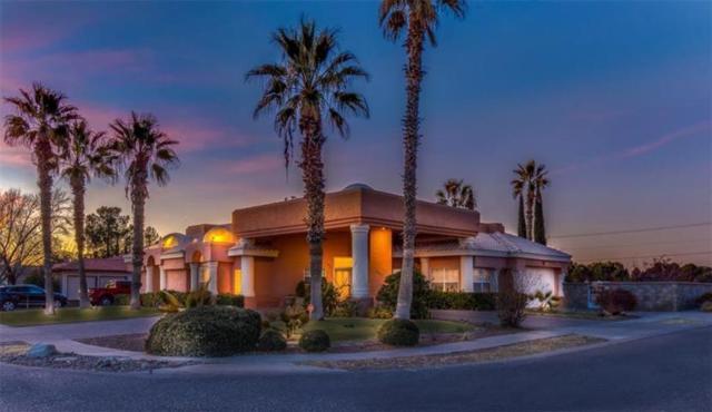 601 Willow Glen Drive, El Paso, TX 79922 (MLS #804096) :: The Matt Rice Group