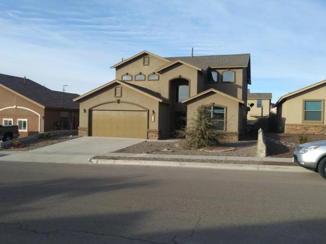 343 Emerald Woods Street, Horizon City, TX 79928 (MLS #804460) :: The Purple House Real Estate Group