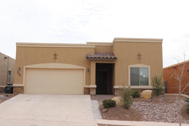 248 Covington Ridge Way, Horizon City, TX 79928 (MLS #805018) :: The Purple House Real Estate Group