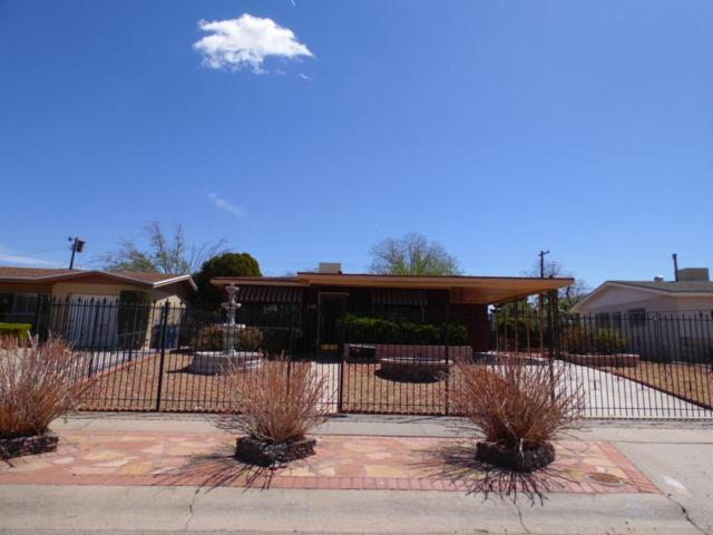 1500 Likins Drive, El Paso, TX 79925 (MLS #806007) :: The Purple House Real Estate Group
