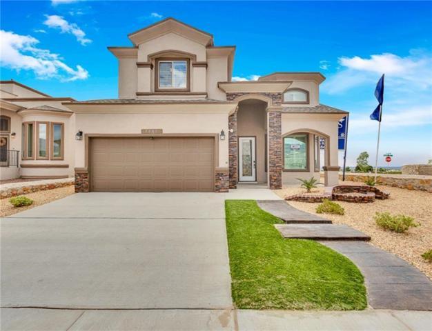 517 Denim Street, El Paso, TX 79932 (MLS #806096) :: The Matt Rice Group