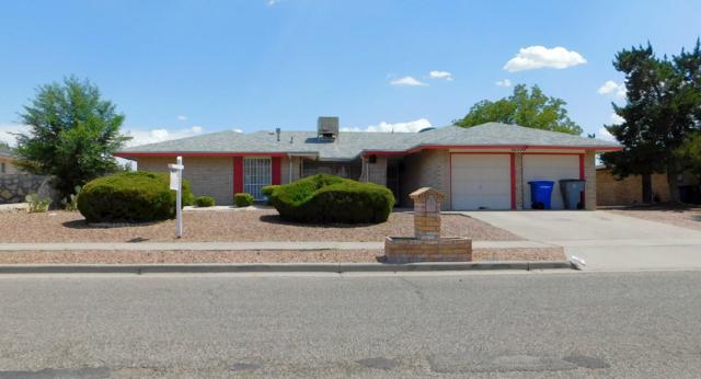 11336 James Grant Drive, El Paso, TX 79936 (MLS #806558) :: Preferred Closing Specialists