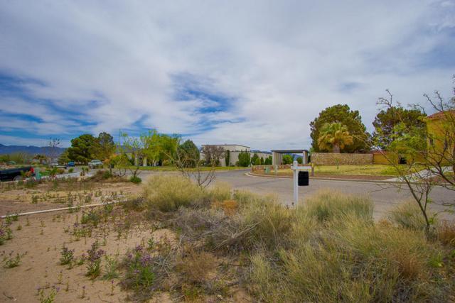 12 Trevino Road, Santa Teresa, NM 88008 (MLS #806649) :: The Matt Rice Group