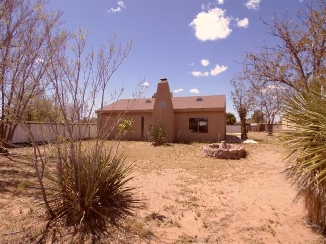 606 S11th Street, Deming, NM 88030 (MLS #806663) :: The Purple House Real Estate Group
