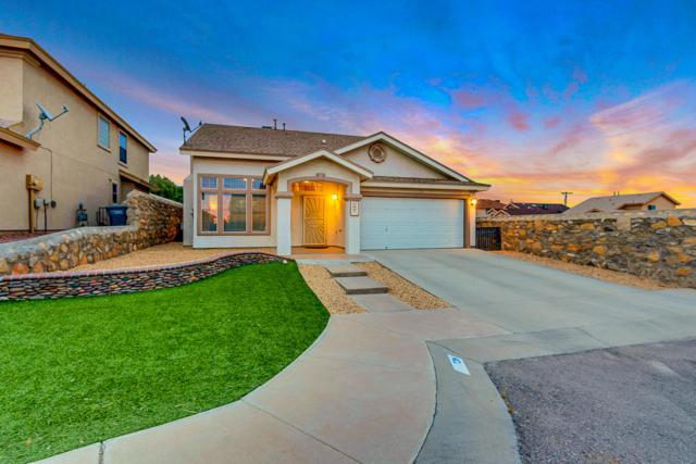 726 Draco Place, El Paso, TX 79907 (MLS #806724) :: The Purple House Real Estate Group