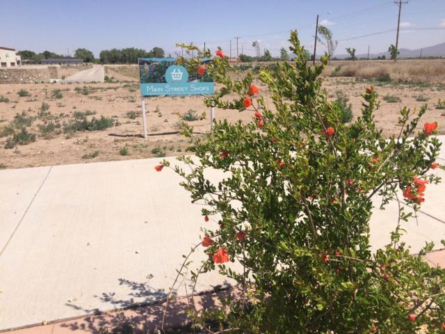 TBD La Vona Drive, El Paso, TX 79932 (MLS #806739) :: The Matt Rice Group