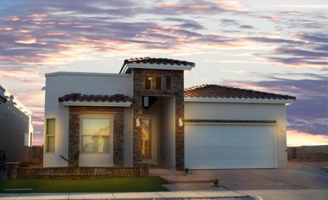 13977 Flora Vista Avenue, Horizon City, TX 79928 (MLS #806822) :: The Purple House Real Estate Group