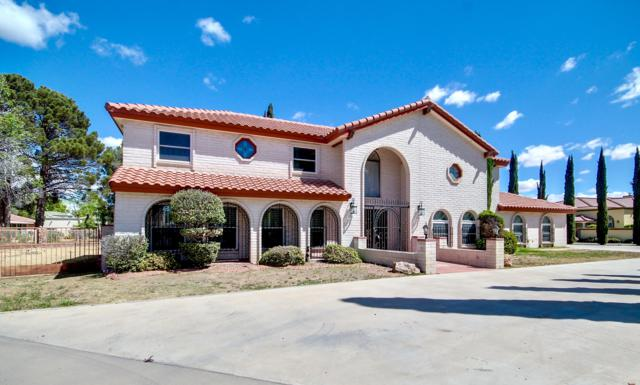 17 Via Placita Street, El Paso, TX 79927 (MLS #806828) :: The Purple House Real Estate Group