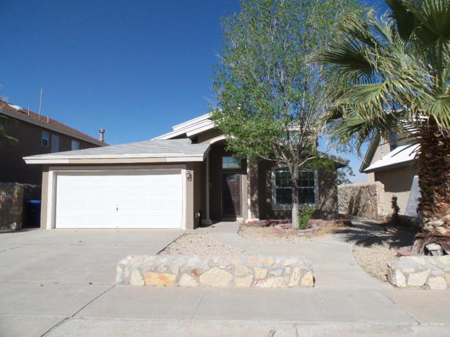 6153 Night Fall Place, El Paso, TX 79932 (MLS #806854) :: The Purple House Real Estate Group