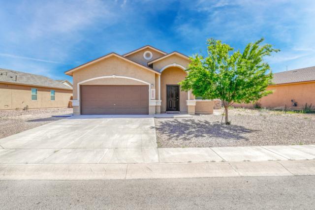 11424 Flor Liatris Drive, Socorro, TX 79927 (MLS #806879) :: The Purple House Real Estate Group