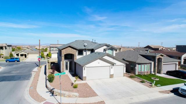 11356 E Ranch Court, El Paso, TX 79934 (MLS #806885) :: The Purple House Real Estate Group