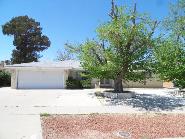 3315 Wedgewood Drive, El Paso, TX 79925 (MLS #806929) :: The Purple House Real Estate Group