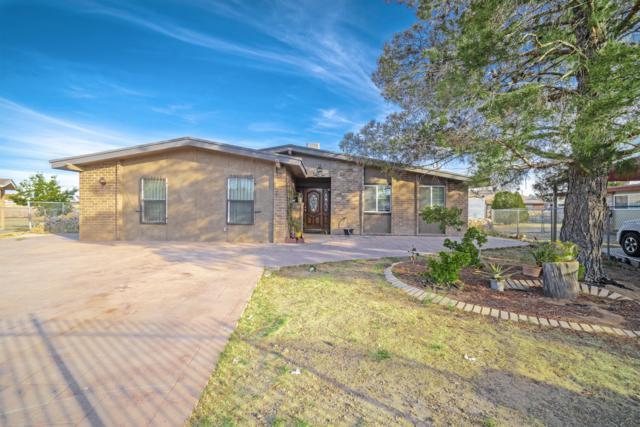 9837 Naomi Drive, Socorro, TX 79927 (MLS #806939) :: The Purple House Real Estate Group