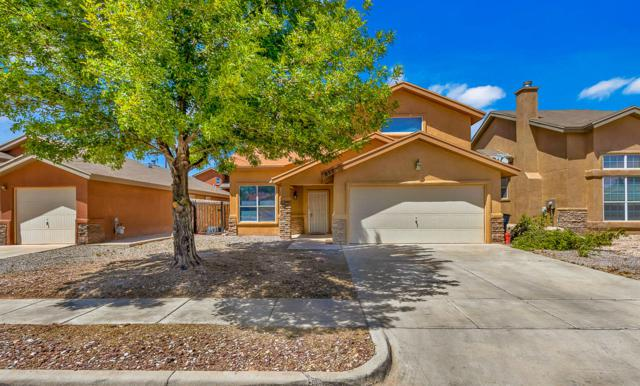853 Agave Park Court, El Paso, TX 79932 (MLS #806959) :: The Purple House Real Estate Group
