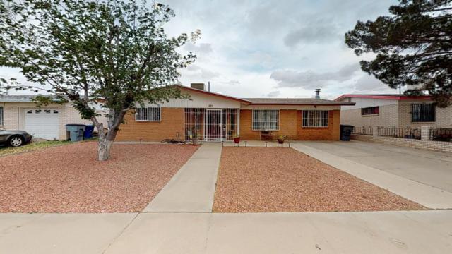 275 Caribe Circle, El Paso, TX 79927 (MLS #806962) :: The Purple House Real Estate Group