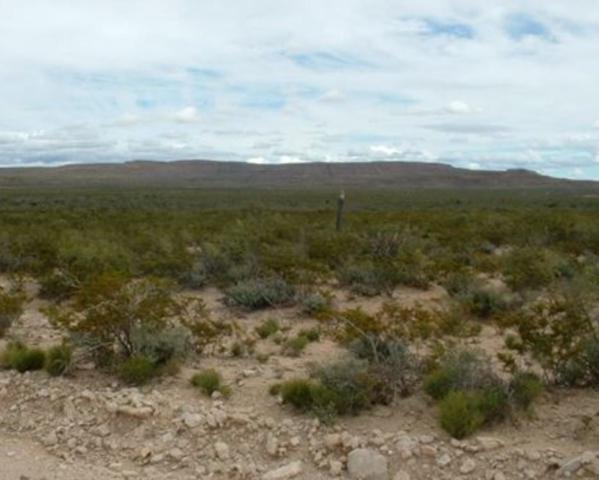 0 Hudspeth, Sierra Blanca, TX 79851 (MLS #806972) :: Preferred Closing Specialists