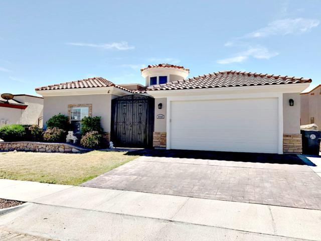 3069 Snowy Point Drive, El Paso, TX 79938 (MLS #806997) :: The Purple House Real Estate Group
