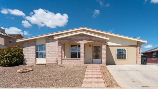 745 Maravillas Street, El Paso, TX 79928 (MLS #806998) :: The Purple House Real Estate Group