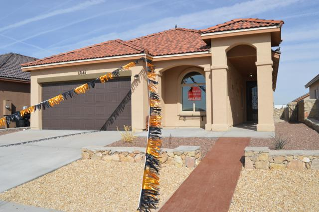 13129 Freshford Avenue, El Paso, TX 79928 (MLS #807020) :: The Purple House Real Estate Group