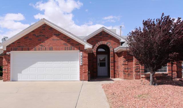 12253 Amstater Circle, El Paso, TX 79936 (MLS #807021) :: The Purple House Real Estate Group