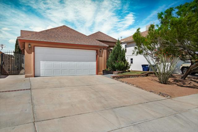 12233 Bill Mitchell Drive, El Paso, TX 79938 (MLS #807023) :: The Purple House Real Estate Group